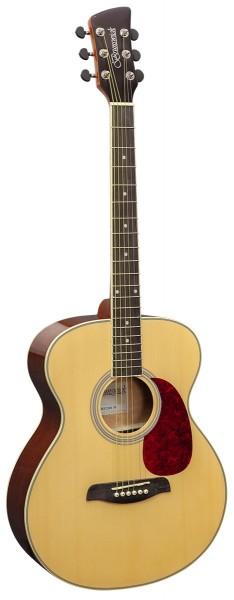 BF200 -  Folk Guitar Natural