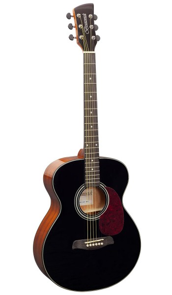 BF200BK -  Folk Guitar Black