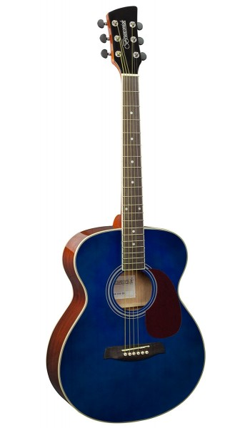 BF200M -  Folk Guitar Blue