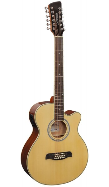 BTK5012NA - Auditorium 12 String Electro Natural