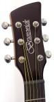 BT200 - Travel Guitar - Natural Satin